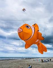 Fly free, little Nemo! (Jan R. Ubels) Tags: littlenemo strand beach netherlands nederland ameland vlieger kite nemo