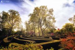 Labyrinth. (Franz - Jimenez) Tags: madrid españa spain parque park garden laberinto labyrinth dream canon eos600d