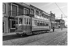 TRANVIA EN FOZ DO DOURO  (Oporto-Portugal ) (RAMUBA) Tags: tranvia foz douro oporto portugal bw trolley car tramway calle street vias railway