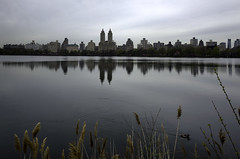Jacqueline Kennedy Reservoir (Joe Josephs: 2,861,655 views - thank you) Tags: nyc newyorkcity travel travelphotography joejosephs photojournalism â©joejosephs2017 ©joejosephs2017 centralpark centralparknewyork urbanparks urbanlandscapes