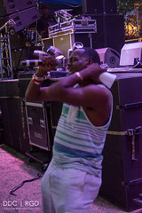 FREESTYLE FEST 2017-94 (REBIRTH GD PIX) Tags: freestylefest2017 allstarconcerts musicfestival timmyt bellbivdevoe lisalisa stevieb houseofpain arresteddevelopment naughtybynature trinere theenglishbeat staceyq debbiedeb chubbrock nocera rebirthgraphicdesigns concertphotography nikon