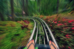 With the Speed of Light (free3yourmind) Tags: speed light dalat vietnam roller woods nature trees flowers coaster fun
