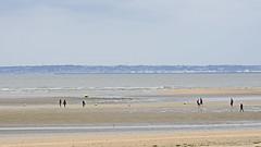 2016.06.29.030 TROUVILLE - La plage, au fond Le Havre (alainmichot93 (Bonjour à tous - Hello everyone)) Tags: 2016 france normandie calvados trouvillesurmer plage mer mar manche horizon falaise