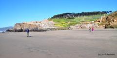 DSC_0222 (rachidH) Tags: scapes views pacific ocean sealrocks cliffhouse sutro baths tide lowtide lobos pointlobos oceanbeach sanfrancisco sf sanfran california rachidh nature