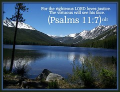 Psalms 11:7 nlt (Bob Smerecki) Tags: life love church true rock stone easter born high truth heaven king christ god spirit brother father ghost religion jesus lord christian mount holy moses again olives lamb bible alive commandments messiah risen salvation abba sanctuary prayers tabernacle nations sabbath blessed redeemer almighty 117 sins scriptures passover psalm faithful everlasting slain forgive baptised crucified preist apostle forgiven deciples reserection strongtower