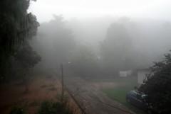 Recepção gelada (Calile) Tags: frio outono névoa