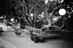 Evening (bior) Tags: california blackandwhite 35mm bench oak rangefinder olympus deck 35mmfilm hammock fujifilm neopan neopan400 olympusxa oaktrees 35mmrangefinder fujineopan
