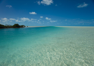 Bahamas Bonefishing - Andros Island 26