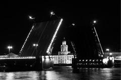 Palace Bridge (Ler4)) Tags: bridge bw lamp night river stpetersburg russia lantern saintpetersburg kunstkamera blackwhitephotos
