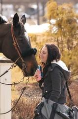 2013-02-28 (8) r5 jockey Natasha Coddington (JLeeFleenor) Tags: horses caballo cheval photography photos uma cal jockey rider jinete cavallo cavalo pferd equestrian kuda alogo equine hest thoroughbreds soos hevonen cuddy paard cavall kon koin laurelpark  jokey fantino hst ceffyl  jquei  ko faras hestur  perd femaleathletes ngi  konj    capall beygir yarraman dokej femalejockey rennreiter  pfeerd marylandhorseracing marylandracing   okej kilparatsastaja jocheu