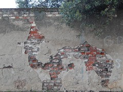 Accidental Camel (mikecogh) Tags: wall peeling bricks plaster camel shape imaginary