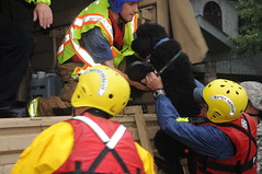 Colorado Floods 2013 (DVIDSHUB) Tags: usa us unitedstates flood co disasterresponse usarmy bouldercounty