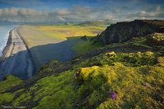 The green coast (Matthieu Parmentier) Tags: sunset summer green beach coast iceland nikon cliffs vik islande d800 1635 dyrhlaey leefiltergnd09soft