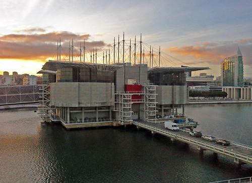Thumbnail from Lisbon Oceanarium