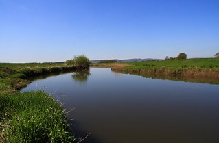 Pulborough Brooks RSPB West Sussex (1)