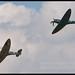 BBMF Spitfire and Netherlands Historic Flight Spitfires