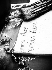 two of those who have spoken the truth (LauraSorrells) Tags: blackandwhite stilllife home paper this beads dd okra shermanalexie quirky thecove wilt jamesagee funkiness beautyinthemundane ourfourthofjulyaltarhonoringamericanswhotoldthetruth