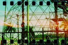 love (Daniele Dirio) Tags: film photography lomo fotografia daniele dirio