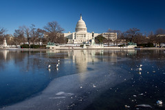 Capitol Vortex (RobertCross1 (off and on)) Tags: winter vortex cold reflection ice birds architecture landscape dc washington districtofcolumbia bluesky olympus arctic uscapitol capitol omd em5 microfourthirds polarvortex vision:mountain=0801 vision:outdoor=099 vision:sky=0896 vision:clouds=0762 1250mmf3563mzuiko