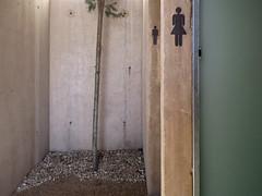 death row (maximorgana) Tags: woman man tree public glass wall couple symbol little toilet icon compo cartagena gravilla