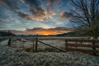 Purdy-Sunrise1