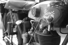 IMG_0558 (Alexis Vst) Tags: moto terrot