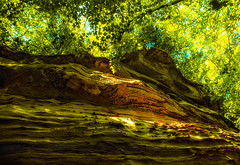 Pine Hills Cliff (Indiana Photographer) Tags: 2017 indiana naturepreserve pinehills cliff rockwall valley summer green trees leaves landscape nature