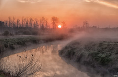 Misty at Sunrise (Martine Lambrechts) Tags: misty sunrise landscape nature fog waterway morning
