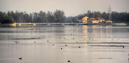 Ormož lake (river Drava, actully)