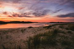 l'Oyat - Dunes du Guillec (Francois Le Rumeur) Tags: brittany sunset seascape landscape paysage finistère bretagne france bord de mer plage beach dune herbe grass sand sable nikon d7100 16mm hd 4k