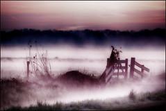 Zondag 09 -04 (maartenappel) Tags: mist canon no polder landschap nederland