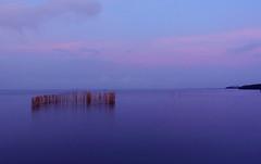 early morning at Bangpu (ArtyCh.) Tags: samutprakarn sun light morning river bangpu blue sky