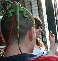 Coleta verde (Franco D´Albao) Tags: francodalbao dalbao huaweipralx1 mascota pet green verde iguana animal gente people arnés harness