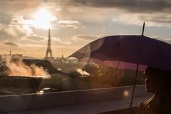 Umbrelight [comments:off] (Adrien Marc (not commenting)) Tags: paris îledefrance france fr toureiffel sun sunset umbrella tourist flare eiffeltower
