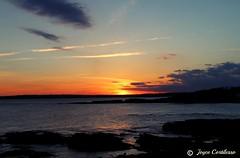 Good Nite Newport! (TravelsJ19) Tags: nighttime newengland nature colors sunset oceandrnewportri newport newportrhodeisland
