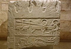 Ostrichs and ibexes (Merja Attia) Tags: ostrichsandibexes huntingscene 12thdynasty fragmentofrelief neuesmuseum berlin neuesmuseumberlin museuminsel museum germany ancient ancientegyptian