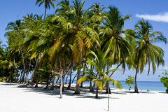 DSC_0168 (Shine2705) Tags: dharavandhoo baa maldives