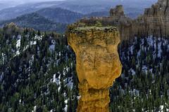 One Hoodoo (hokie311) Tags: bryce canyon brycecanyon nationalpark park utah sunrise hoodoo snow light trees