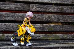 BOB_5310 (AeroHail) Tags: toyphotography busoushinki 武装神姫 パーティオ busou shinki partio