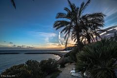 Sanremo (DiegoGuidone) Tags: tramonto focus focale liguria canon eos 6d obbiettivo sigma 150600mm f563 dg os tempo desposizione 1500sec valore dapertura sensibilità iso lunghezza mare spiaggia acqua cane cresta onda oceano raggi di sole alba mattino sunset