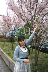 Missed Your Spring Blossoms? (emotiroi auranaut) Tags: woman lady pretty beauty beautiful lovely japan flowers trees blossoms sakurai dress happy singer cheerful nice spring season seasonal
