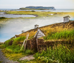 NEWFOUNDLAND L'ANSE AUX MEADOWS (Pat Newton) Tags: newfoundland canada history collage montage canon6d canon24105mm vikings ngc