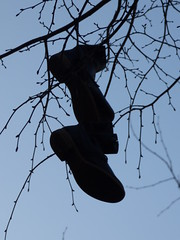 Ready for Walking (Sysli) Tags: berlin germany shoes trees tress worn silhouette