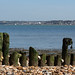 Old Groynes at Lepe