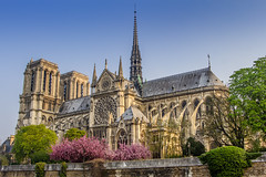 NotreDame Cathedral (charenty) Tags: paris france notredame cathedral river sein