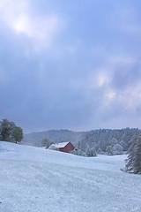 April Weather (johaennesy) Tags: snow april soft redhouse morning meadow cold scheidegg allgäu alpenstrase deutschealpenstrase germany bavaria gimp rawtherapee sonyalpha sony a580 primelens 35mm