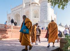 "Buddhist monks visiting the Taj Mahal    DSC05471 (mariomath) Tags: india inde taj mahal agramoghol mumtaz yamuna makrana merveille akbar shah jahan voyagearabais tajmahal 7merveillesdumonde mumtazmahal shahjahan ""flickrtravelaward"""