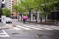 img819 (markczerner) Tags: washington dc washingtondc street streetphotography rain rainyday rainy nikon nikonfa filmphotography fuji fujifilm pro400h 400h filmisnotdead umbrella wet metro district