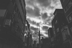 Sky tree 晴空塔|東京都 Tokyo city (里卡豆) Tags: olympus penf 日本 關東 東京 tokyo 淺草觀音寺 寺廟 廟宇 tmple 淺草 asakusa temple panasonic leica dg 12mm f14