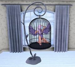 Artis Caged 1 (Treycee Melody) Tags: posefair animations poses poseprop artis secondlife event